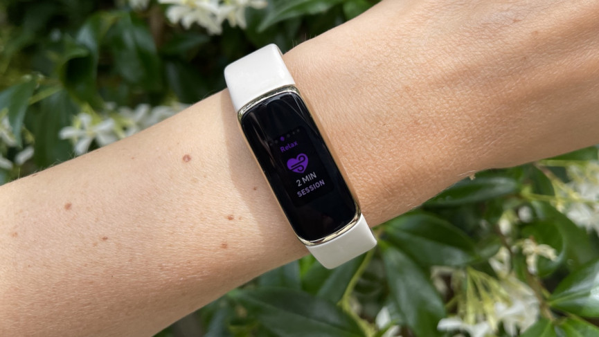 Fitbit Luxe review: serious style